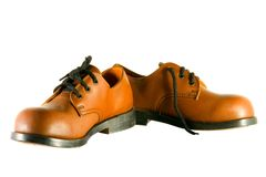 Brown walking shoes Stock Image