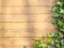 Brown wall Stock Image