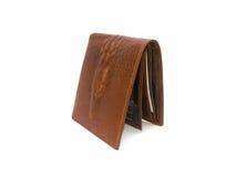 Brown Wallet crocodile skin Stock Image