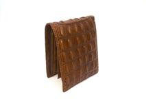 Brown Wallet crocodile skin Stock Photo