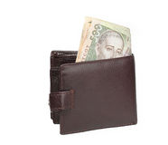 Brown wallet with money Stock Images
