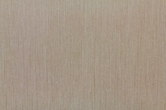 Brown wallpaper. Texture for background Royalty Free Stock Image