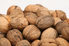 Brown walnuts. On white background Royalty Free Stock Images