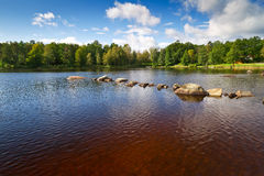Brown water lake in Kyrkhult Royalty Free Stock Image