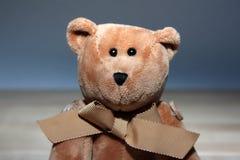 Brown-weicher Bär - spielen Sie mit einem Band Lizenzfreie Stockbilder