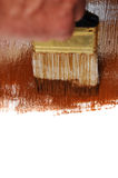 Brown Wet Paint Brush Stock Images