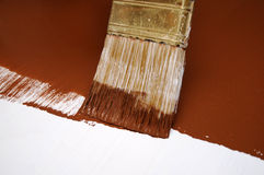 Brown Wet Paint Brush Royalty Free Stock Images