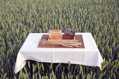 Brown and white bread on table on summer wheat field Stock Photography