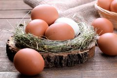 Brown and white chicken eggs in a nest of grass on a brown background. stock image