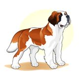 Brown and white coloured dog amazing vector illustration. Cute cartoon dogs vector puppy pet characters breads doggy illustration. Brown and white coloured dog royalty free illustration