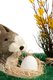 Brown and white Easter bunny Stock Photography
