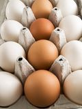 Brown and white eggs. A close up on a carton of brown and white eggs Royalty Free Stock Photos