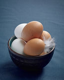 Brown and white eggs Royalty Free Stock Images