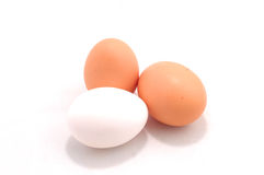 Brown and white eggs Stock Images