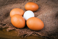 Brown and white eggs on burlap Royalty Free Stock Image