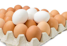 Brown and white eggs in the cardboard egg tray closeup Stock Photos