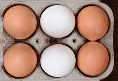 Brown and White Eggs in 6 Pack Carton Royalty Free Stock Images
