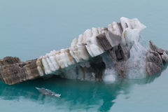 Brown and white glacier in water of Glacier Bay, Alaska Royalty Free Stock Images