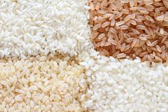 Brown and white rice background Stock Image