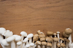 Brown and white shimeji mushroom on the table with empty space on the middle top of wooden table stock photography