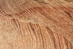 Brown-white striated texture of natural sandstone Royalty Free Stock Photos