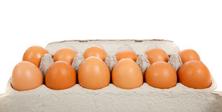 Brown whole eggs in a carton. On a white background Royalty Free Stock Photos