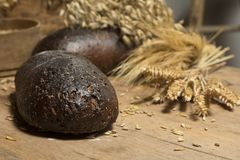 Brown whole grain loaves composition on rustic wood. Bread background. Brown whole grain loaves composition on rustic wood with wheat ears scattered around Royalty Free Stock Image
