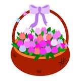 Brown Wicker basket with tulips of pink shades. Vector illustration colorful object for baby educational cards. With a purple bow royalty free illustration