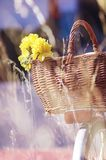 Brown Wicker Basket and Yellow Flowers Royalty Free Stock Photography