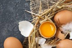 Brown Wielkanocni jajka w Łozinowym koszu z słomą Obraz Royalty Free