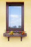 Brown window with flowers in hanging flower pot. Brown window with flowers in hanging flower pot Royalty Free Stock Photo