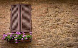 Brown window shutters Royalty Free Stock Images