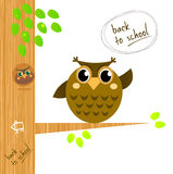 Brown wise owl on tree isolated on white. Wise owl character showing Back to school sign. Vector cartoon Illustration Stock Images