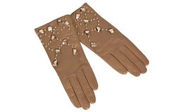 Brown woman  gloves Royalty Free Stock Photos