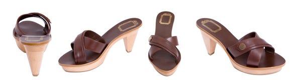 Brown women sandal royalty free stock image