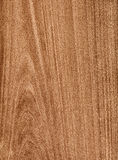 Brown wood background Royalty Free Stock Image