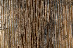 Brown wood board with black and white stains texture photo Royalty Free Stock Images