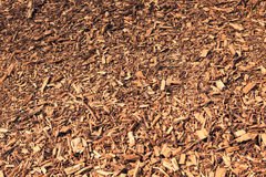Brown wood chips background Stock Photos