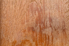 Brown Wood Detail Background Texture Royalty Free Stock Images