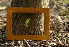 The brown wood frame Royalty Free Stock Image