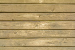 Brown wood plank wall texture background. Pattern of beige strip Royalty Free Stock Photo