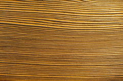 The brown wood texture. Background close up Royalty Free Stock Photos