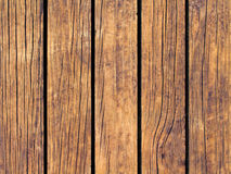 Brown wood texture with vertical lines. Warm brown wooden background for natural banner. Royalty Free Stock Photography