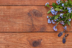 Brown wooden background with bunch of forget-me-nots. Brown wooden background with forget-me-nots Royalty Free Stock Photos