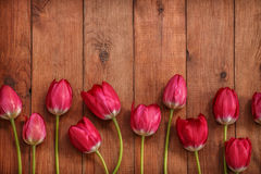Brown wooden background with red tulips Stock Photo