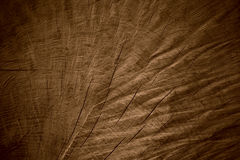 Brown wooden background Royalty Free Stock Image