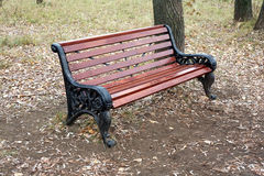 Brown wooden bench in autumn park Stock Image