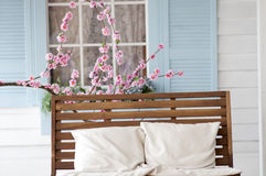 Brown wooden bench with pillow near the cherry blossoms Royalty Free Stock Photos