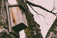 Brown Wooden Bird House on Tree Stock Photos