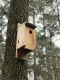 Brown Wooden Birdhouse on Brown Tree Trunk stock photos